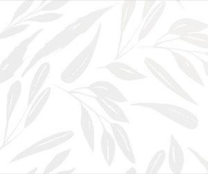 Настенная плитка Montblanc White 500х249 мм