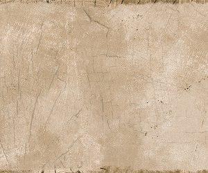 Настенная плитка Ringwood Brown 500х249 мм