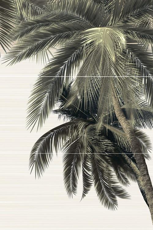 Панно из пальм